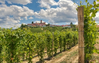 Food and Wine Tours in Italy