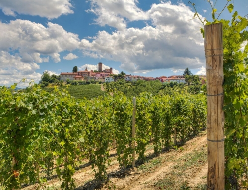 What It Means to Develop Sustainable Food & Wine Tours in Italy