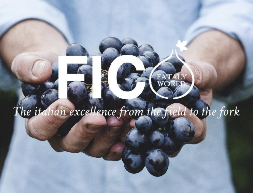 FICO Eataly World's Largest Food Park – Gourmet Lovers are Welcome