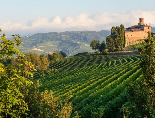 Live. Eat. Drink. Like a true Piemontese