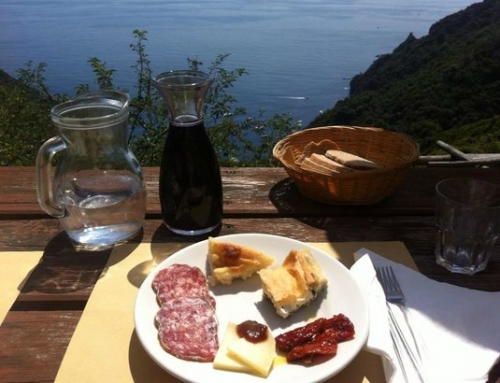 Back to the roots: find out what Drink & Taste Italy really means with FindYourItaly