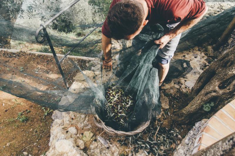 sustainable travel responsible travel Italy_la portofinese